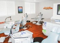 Pollei Orthodontics